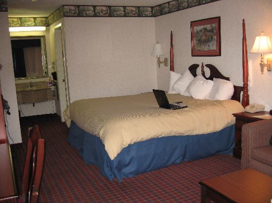 BEST WESTERN Irving Inn & Suites at DFW Airport: king bed looking from doorway