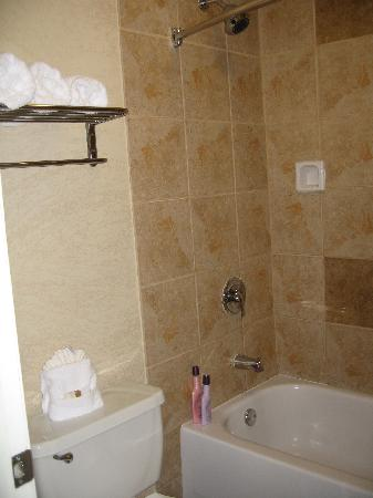 BEST WESTERN Irving Inn & Suites at DFW Airport: looking into bath