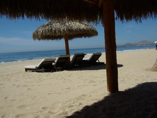 Cabo Azul Resort: Palapas on the beach