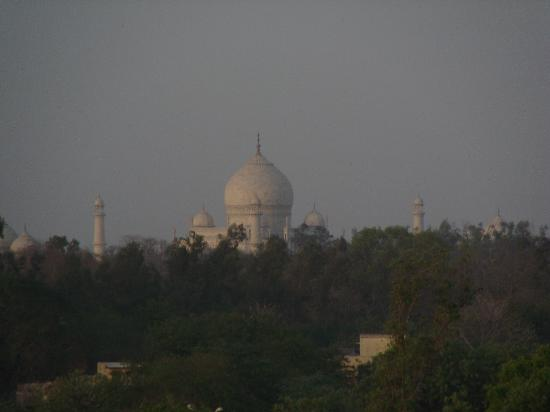 Hotel Clarks Shiraz: view of the taj from the roof top