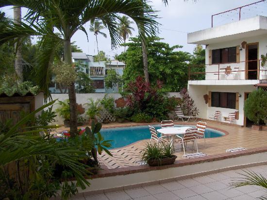 Casa Coco: vue de la piscine