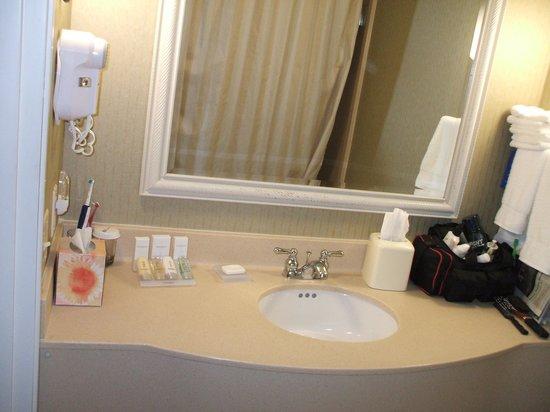 Hilton Garden Inn Minneapolis / Bloomington Foto