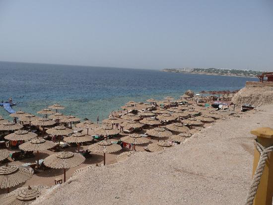 Maxi Village Sinai Garden: spiaggia