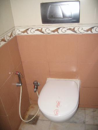 Iskcon, Hare Krishna Complex: clean toilet