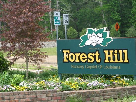 Forest Hill, لويزيانا: Forest Hill, LA Nursery Capital of LA