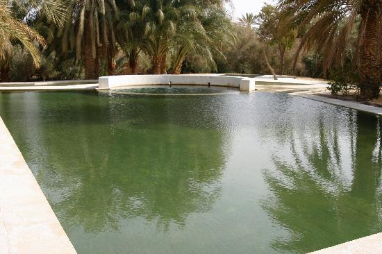 Adrere Amellal: Desert Ecolodge: Swimming Pool / Spring