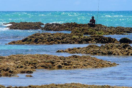 Maraú, BA: Maragogi Reef and Local Fisherman