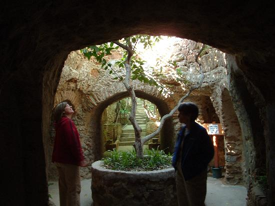 Entrance To Garden Picture Of Forestiere Underground Gardens Fresno Tripadvisor