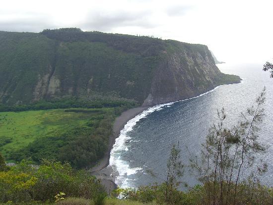 写真ハワイ島枚