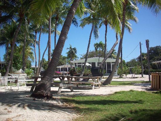 Kon-Tiki Resort: Resort View