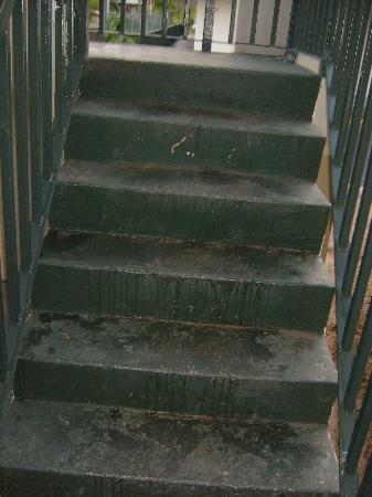 Days Inn Albany: broken beer bottle on scummy steps
