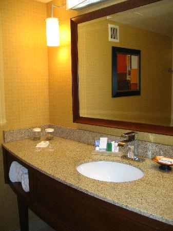 DoubleTree by Hilton Johnson City: Bathroom Sink