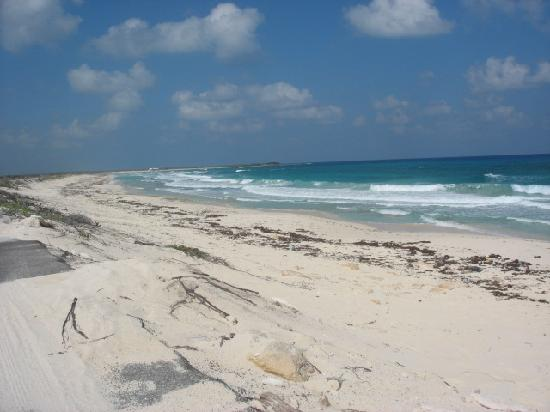The East Side - Naked Beach - Foto Van Cozumel, Quintana -6134