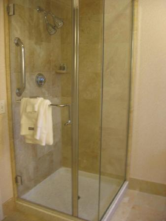 The Westin Palo Alto: shower