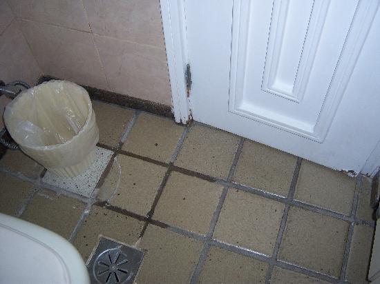 Ipanema Tower: Bathroom