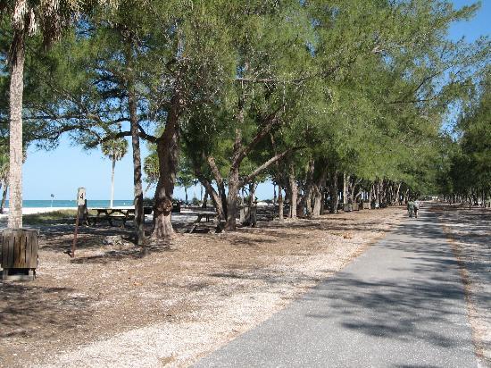 Coquina Beach Picture Of Anna Maria Island Florida Tripadvisor