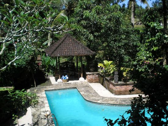 Kebun Indah: pool view