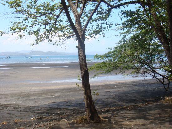 Allegro Papagayo : beach front