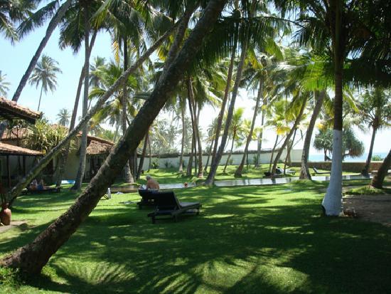 Apa Villa Thalpe: garden