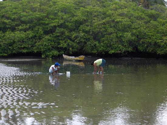 Pescatrici a Barra Nova
