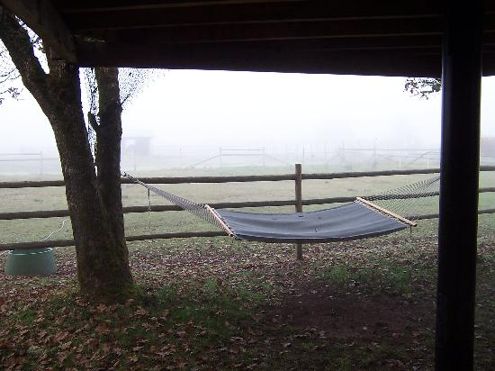 Out 'n' About Treehouse Treesort: Your own private hammock