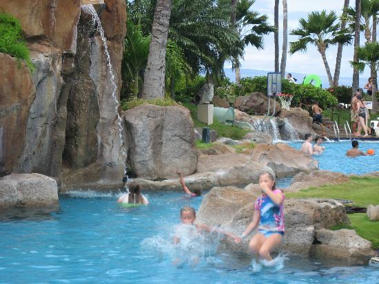 Fun at the Westin pool