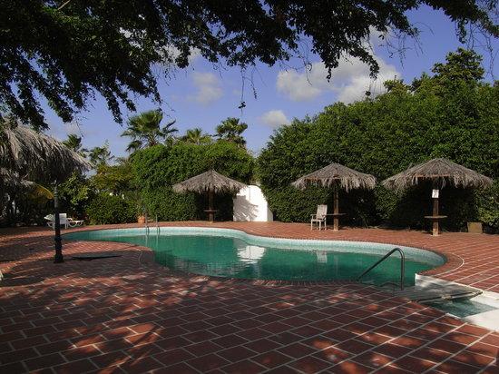 Caribbean Court Bonaire - Breezy Bonaire : Pool in der Anlage