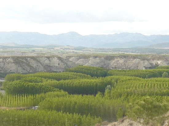 Cueva Pedro: Spectacular Views
