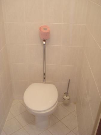 Pension 44: toilet