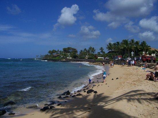 Prince Kuhio Condos: Lawai beach-awesome snorkeling!