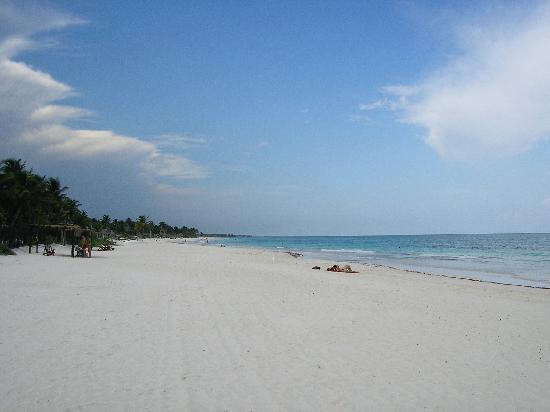 Nueva Vida de Ramiro: Beach