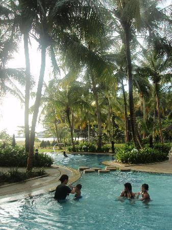 ParkCity Everly Hotel Miri: Swimming Pool