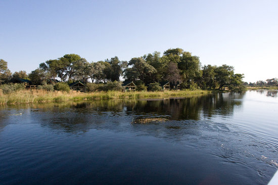 Lagoon Camp - Kwando Safaris: view of tents from river