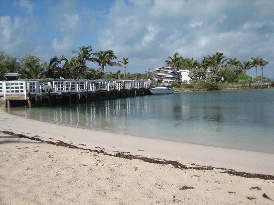 Elbow Cay: again sound side @ the Inn