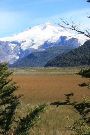 Nahuel Huapi National Park: snow covered tronador