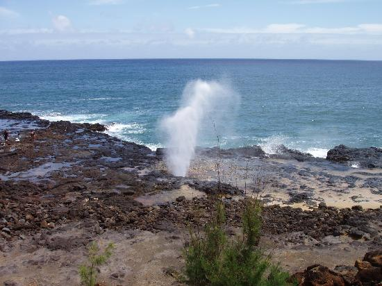 Regency Resorts Condominiums: The Spouting Horn near Po'ipu