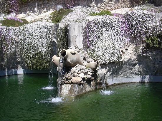 Sa Domu Cheta: l'Orto Botanico
