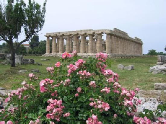 Oleandri Resort Paestum - Hotel Residence Villaggio Club: Temples
