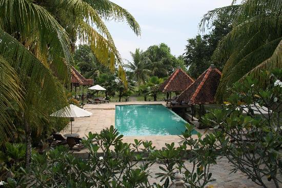 The Aryani Terengganu : piscine