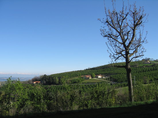 Benevello, Itália: The view from the breakfast room