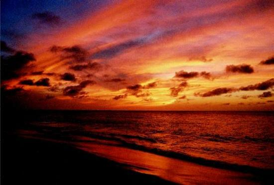 Tripadvisor Palm Beach Aruba Restaurants