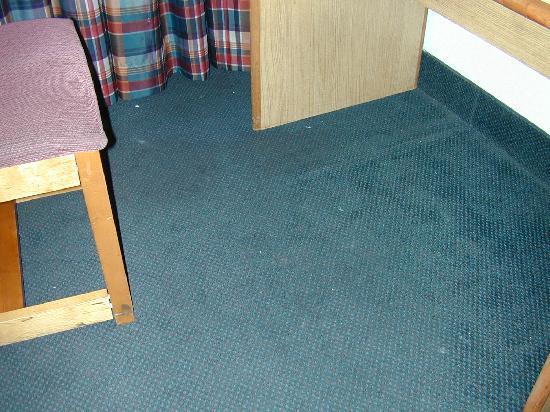 Howard Johnson Hotel Rockford: Dirty carpet under the desk