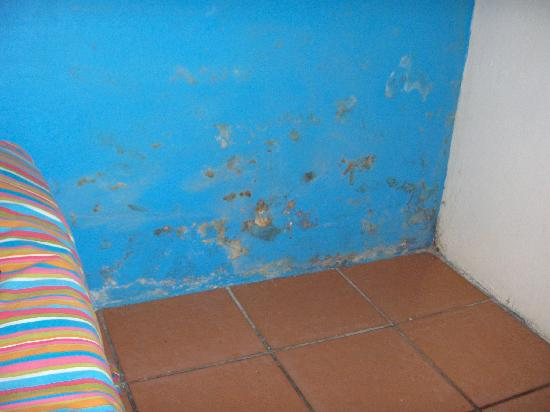 Backpackers HQ: The wall next to the bed
