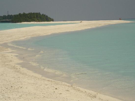 Kuramathi Maldives: sand bank