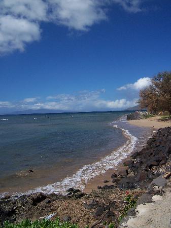 Island Surf Condominiums: Maui in December