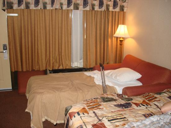 Vacation Lodge: sofa bed