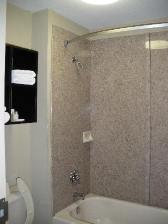 Inn at Mulberry Grove: Bathroom