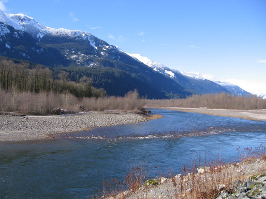Britisk Columbia, Canada: Eagles Dyke at Brackendale, Squamish