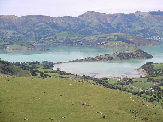 Akaroa, Nueva Zelanda: NZ Akoroa