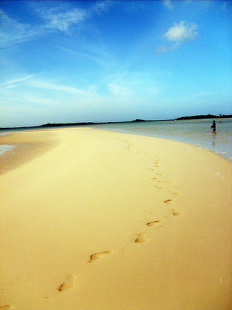 Exuma : Our Foot Prints on a sand bar